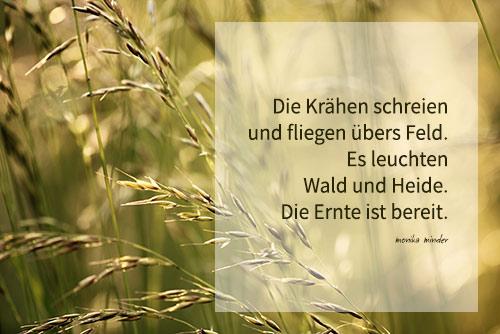 Herbst kurz gedicht Moderne HERBSTGEDICHTE